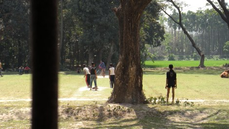 Cricket outside the college